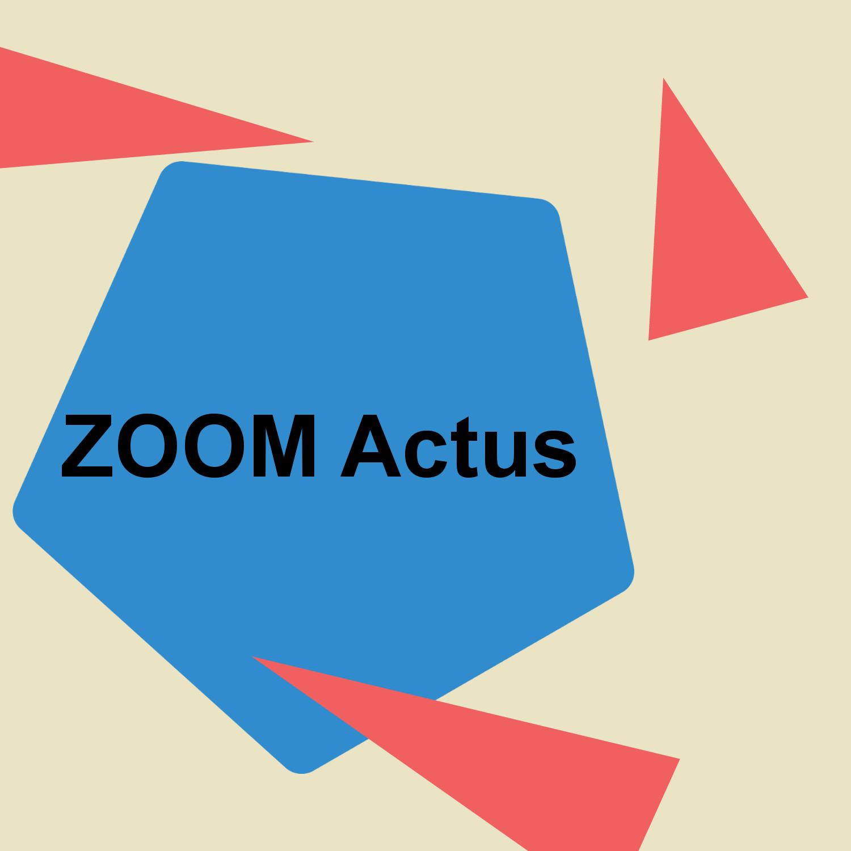 Modèle Zoom Actus 2019