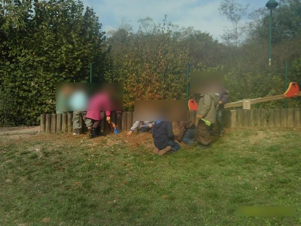 Plantation des bulbes de tulipes et d 39 iris web coles bourgoin 2 - Bulbes a planter au printemps ...